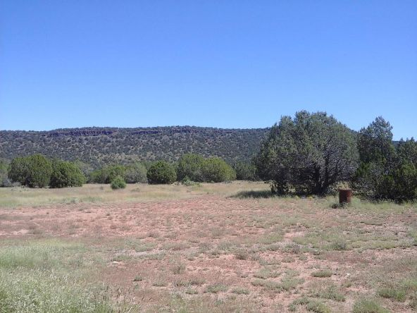 47683 N. Deadwood Rd., Seligman, AZ 86337 Photo 22