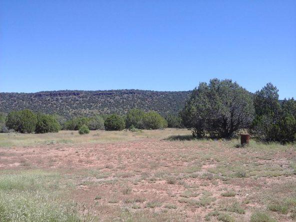 47683 N. Deadwood Rd., Seligman, AZ 86337 Photo 22