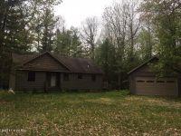 Home for sale: 5305 E. Marquette Trail, Chase, MI 49623