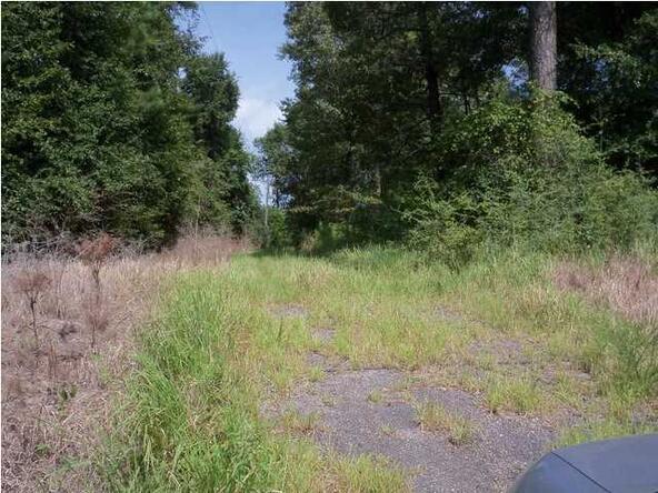 6440 Glenwood Rd., Wilmer, AL 36587 Photo 1
