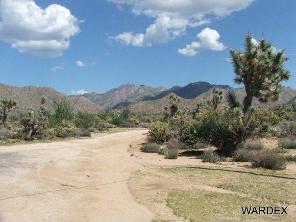 3181 Butch Cassidy Rd., Yucca, AZ 86438 Photo 22