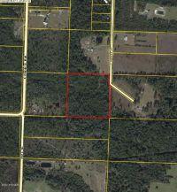 Home for sale: 18035 Crowson Ln., Fountain, FL 32438