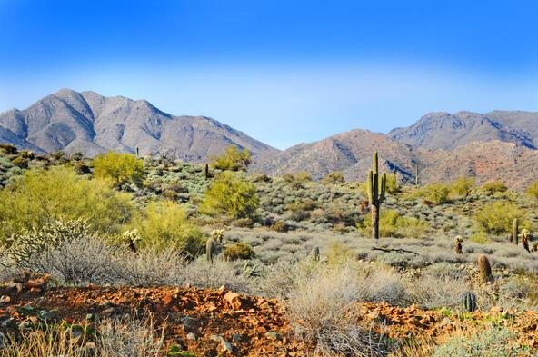 14340 E. Desert Tortoise Trail, Fountain Hills, AZ 85268 Photo 8