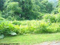 Home for sale: Lot 139 Ryan Rd., Fairmont, WV 26554