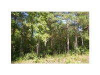 Home for sale: 0 Lot 20 Handley Blvd., Morrow, GA 30260
