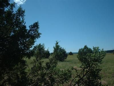 1571 W. Wolf (Lot 6) Ln., Williams, AZ 86046 Photo 1