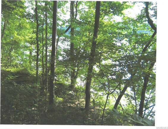 25 Riverknolle Rd., Tallassee, AL 36078 Photo 4