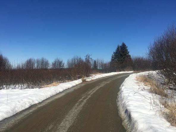 17862 Arcturus Loop, Ninilchik, AK 99639 Photo 41