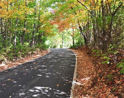 3925 Real Quiet Ln., Lexington, KY 40509 Photo 3