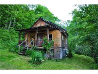 Home for sale: 1863 Poplar Gap Rd., Hot Springs, NC 28743