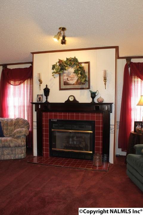 1210 County Rd. 23, Geraldine, AL 35974 Photo 5