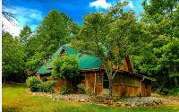 Home for sale: 304 Spiva Cove Rd., Blairsville, GA 30512