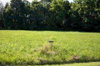 Home for sale: Lot 12 Riverview Dr., Milton, KY 40045