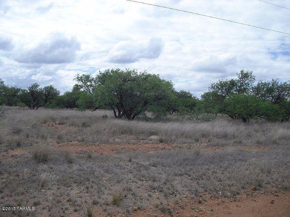16005 Ranger Rd., Arivaca, AZ 85601 Photo 8