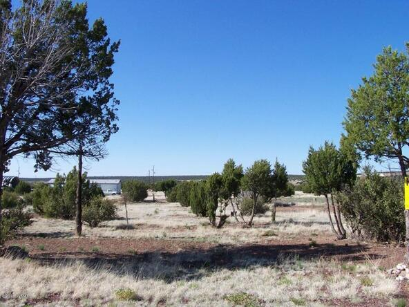8482 Basalt Pl., White Mountain Lake, AZ 85912 Photo 14
