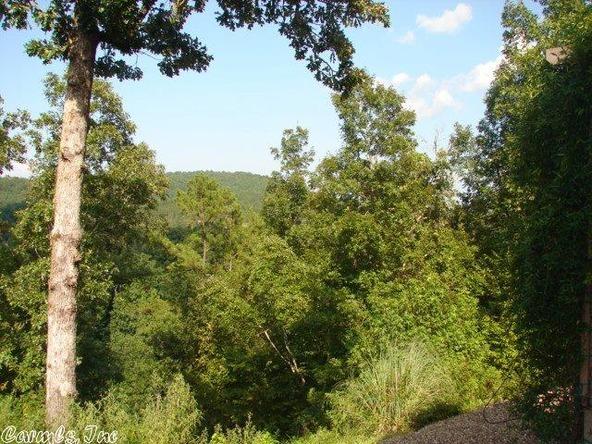 77 Largo Dr., Hot Springs Village, AR 71909 Photo 5