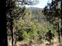 Home for sale: 100 Woodland Dr., Ruidoso, NM 88345