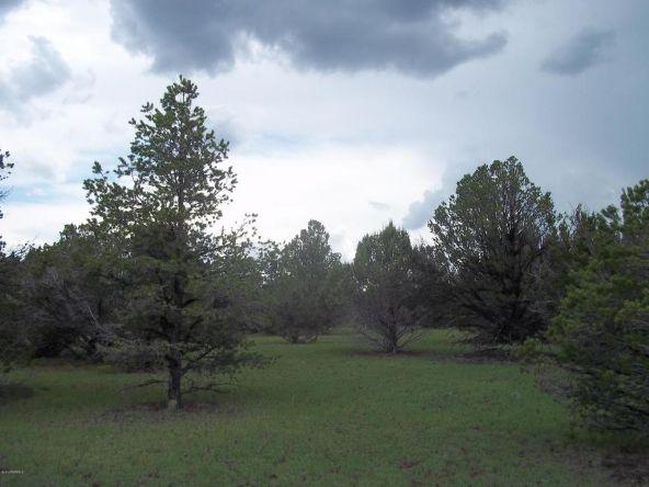 184 E. Bald Eagle Ln., Williams, AZ 86046 Photo 1