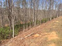 Home for sale: Lot 108 High Pines Loop, Lake Lure, NC 28746