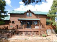 Home for sale: 2982 Ranch House Rd., Overgaard, AZ 85933