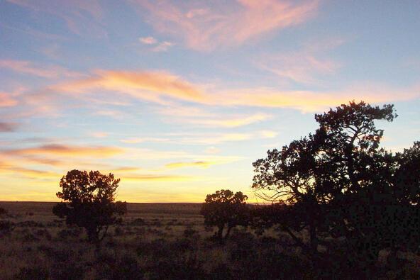 6218 S. Prairie Grass Ln., Williams, AZ 86046 Photo 24