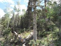 Home for sale: Lot 9 Porcupine Rd., Taos Ski Valley, NM 87525