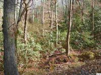 Home for sale: Lot 2 Sugar Maple Loop, Sevierville, TN 37862