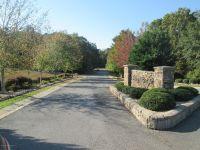 Home for sale: Stony Ridge Dr. Lot 17, Winfield, AL 35594