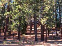 Home for sale: 6 Yonkalla Trail, Graeagle, CA 96103
