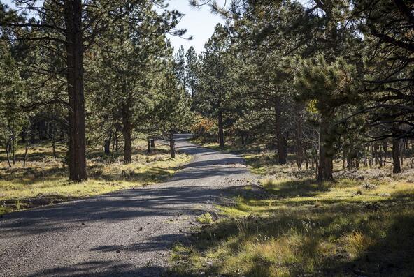Tbd Eagle's. Nest Rd., Lot 2, Placerville, CO 81430 Photo 8