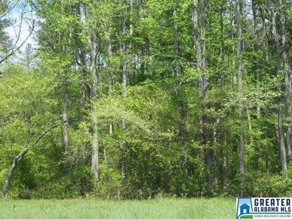 32 Acres Lystra Rd., Ashland, AL 36251 Photo 7