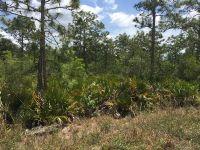 Home for sale: Apopka Vineland Rd. S., Orlando, FL 32821