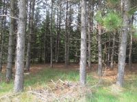 Home for sale: 81 Acres Off Jane Spur Rd., Gleason, WI 54435