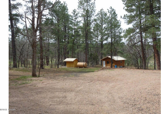 1473 E. Spruce Ln., Pinetop, AZ 85935 Photo 36