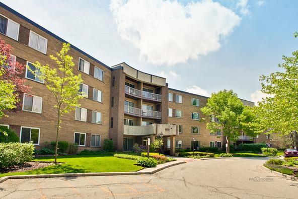 909 East Kenilworth Avenue, Palatine, IL 60074 Photo 4