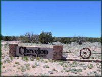 Home for sale: 5985 Cow Bell Rd., Overgaard, AZ 85933