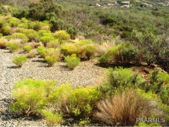 12991 E. Oak Hills Trail, Mayer, AZ 86333 Photo 15
