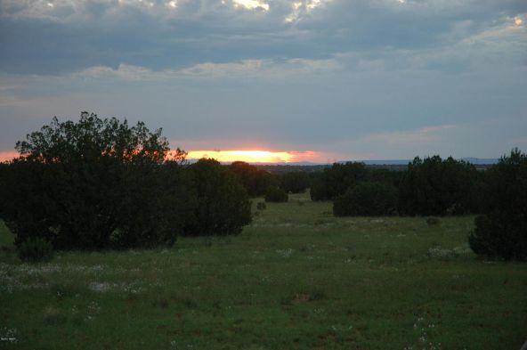 5957 Cow Bell Rd., Heber, AZ 85928 Photo 19