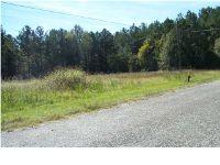 Home for sale: 293 Randall Rd., Cecil, AL 36013