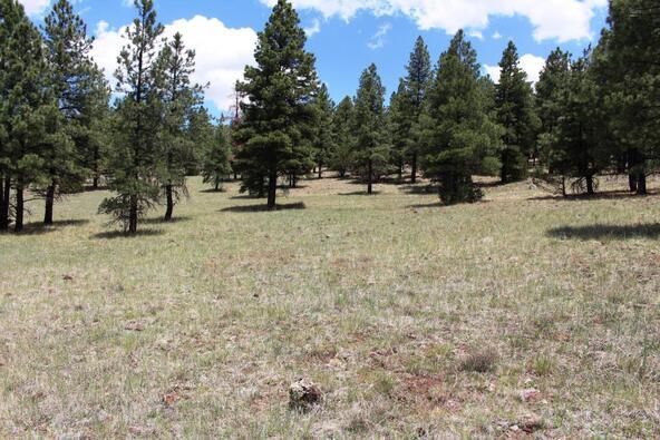 3252 N. Chickadee Trail, Flagstaff, AZ 86001 Photo 21