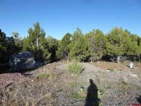 Home for sale: 19961 Surface Creek Rd., Cedaredge, CO 81413