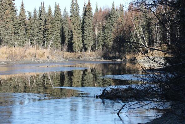 14837 E. Gold Miners Way, Willow, AK 99688 Photo 4