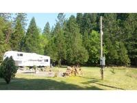 Home for sale: 561 Kimmel Ln., Idleyld Park, OR 97447