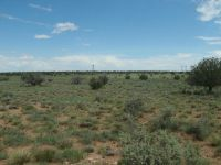 Home for sale: 7668 Kasias Trail, Snowflake, AZ 85937