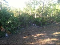 Home for sale: Tunbridge St. #11a, Orlando, FL 32833