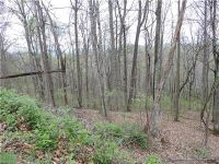 Home for sale: Lot 20 Forest Ln., Burnsville, NC 28714