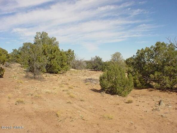 1d N. 8690, Concho, AZ 85924 Photo 15