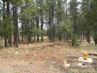 Home for sale: 1111 Fire House Ln., Lakeside, AZ 85929