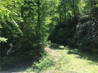 Home for sale: Tbd Dundee Ln., Pisgah Forest, NC 28768