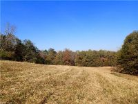Home for sale: 000 Painter Rd., Mooresboro, NC 28114